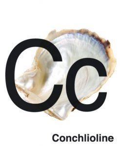 conchlioline